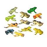 Toyvian Figuras de Ranas Juguetes Divertidos 12 Piezas, Juguetes de Animales de Ranas de plástico Surtidos, Ranas de Juguete realistas, Juego de Juguetes de Ranas con rocalla y árbol